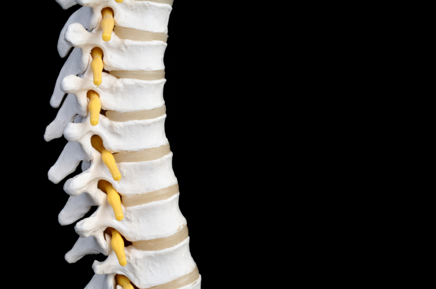 Chiropractic Care & Network Spinal Analysis